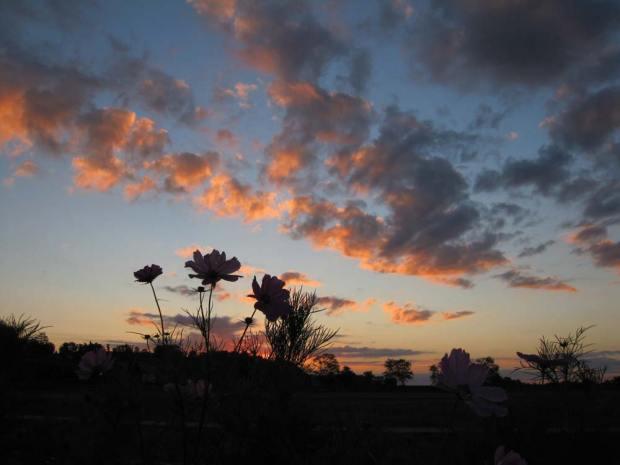 Pre-sun rise