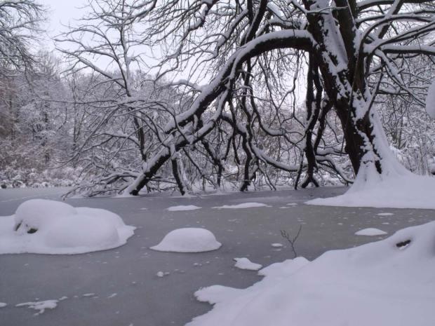 Svanholm in winter