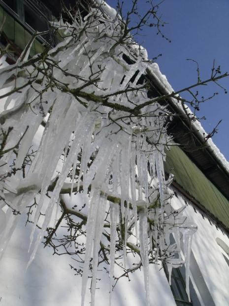 Amazing icicles