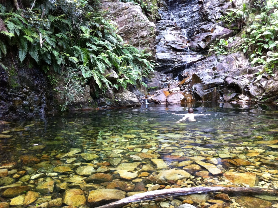 Waterfall Swimming at Wild Spirit