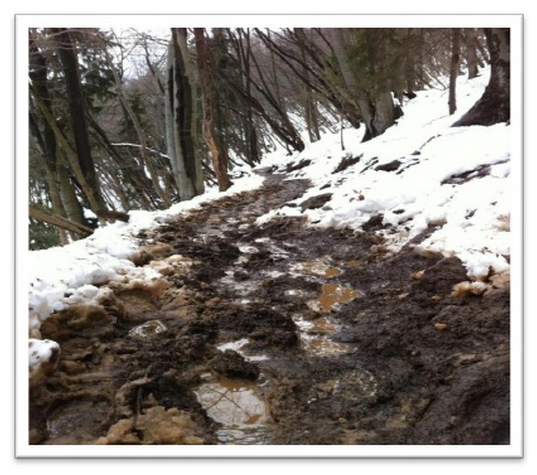 The muddy path up Shmarna Gora on a wet day